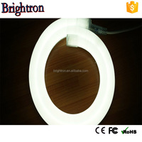 Economical price disco high quality 3000k warm white waterproof ip68 rgb led neon flex rope light