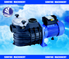 Outdoor Swimming Pool Spa Water Pump
