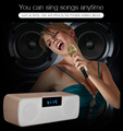 Excellent Quality Pertect Wireless Protable Bluetooth Microphone Speaker