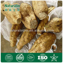 Natural Pueraria Mirifica Extract White Kwao Kru Breast Enhancer from GMP Manufacturer