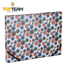 Hot Sell A4 decoration PP plastic elastic file folder