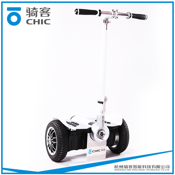 CHIC LS cheap and high quality motorcycle sidecar for adult