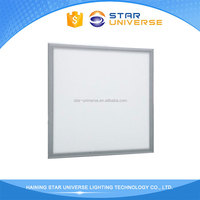 Worth buying Factory directly provide Led Light Panel Glass