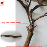 New products 2016 wedding wishing tree dry tree for deocration wishing tree centerpiece