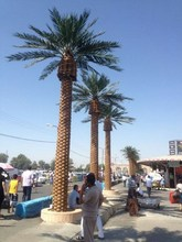 Hot sales artificial date palm tree for outdoor decoration date palm tree