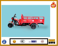 Lifan petrol gasoline diesel oil flat cheap Chinese loading cargo tricycle with wagon