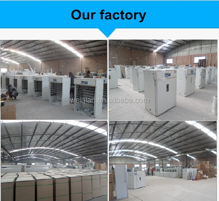Автоматический инкубатор и хэтчер / инкубатора инкубатора / курица птицефабрики оборудование