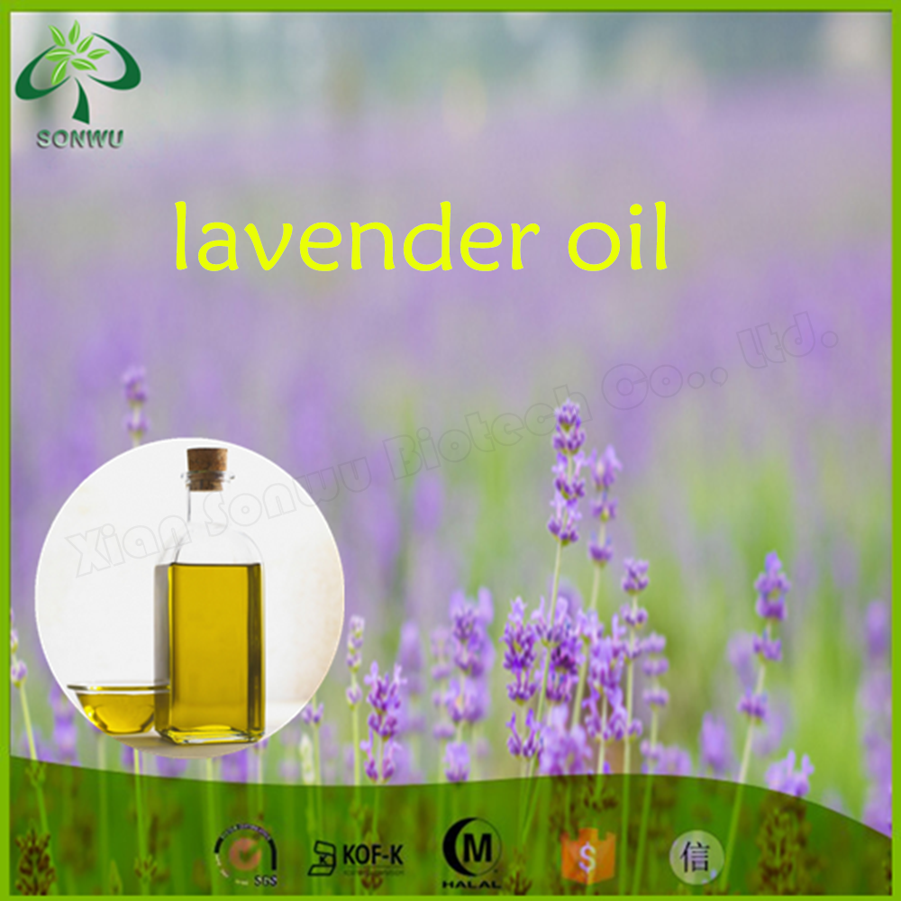 Competitive price bulgarian lavender essential oil/essential oil lavender