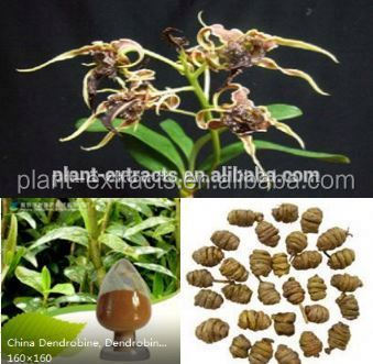 High quality orchid extract dendrobium extract