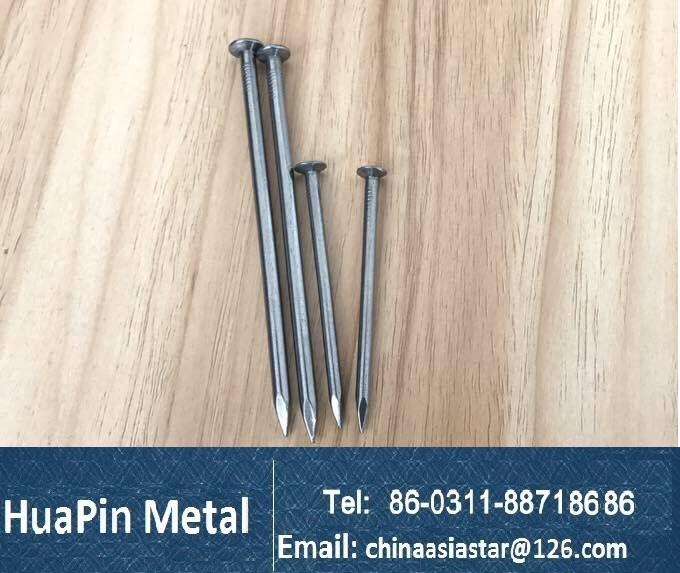 common wire nail /wood wire nail