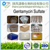 /product-gs/supply-high-quality-gentamycin-sulfate-1405-41-0-60419322731.html
