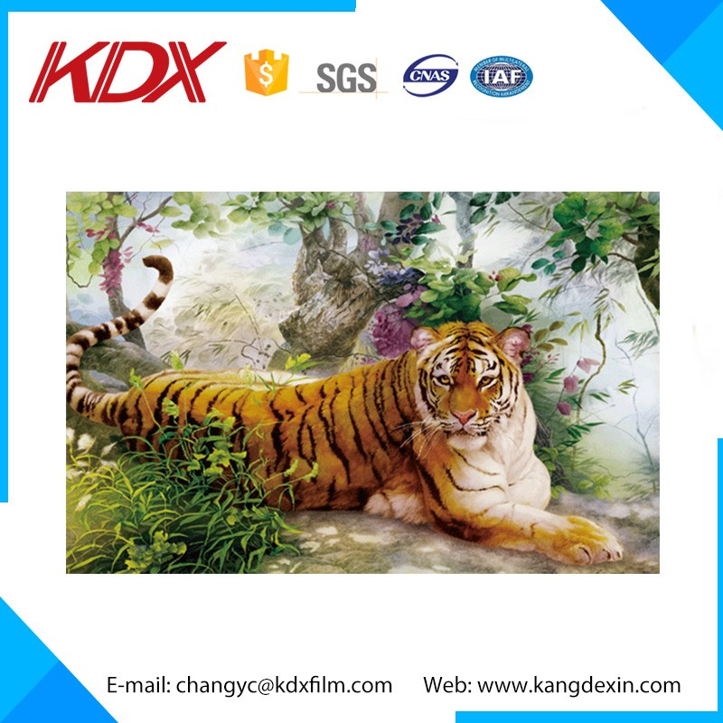 Tiger And Horse 3D Lenticular Printing Picture With Frame For Wall Decorative Hanging Picture
