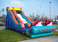 cheap big kahuna water slide inflatable