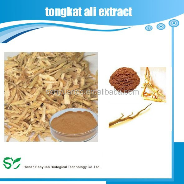 herbal supplement tongkat ali extract