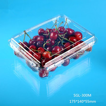 plastic clamshell food grade packaging container
