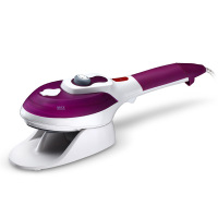 The ceramic plate handy steam iron brush