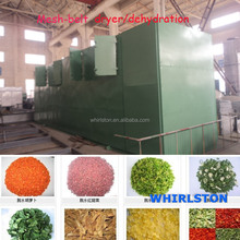Vegetable Plant Fruit and Vegetable mesh-belt drying machine/dehydrator/dryer for sale