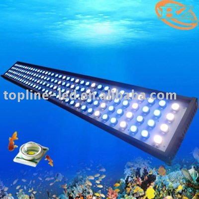 2011 NEW 300W black housing led aquarium light (5ft long)