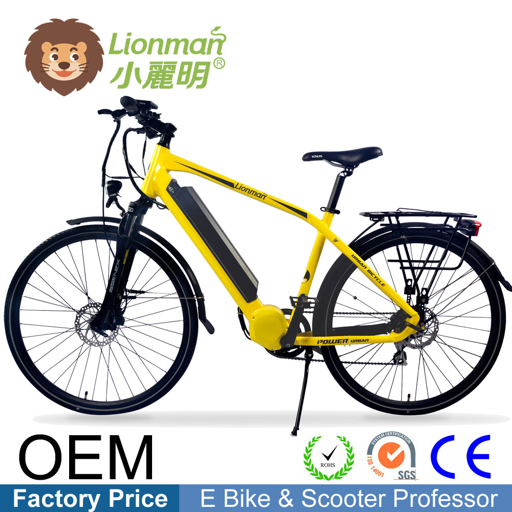 China manufacturer mid drive motor electric bicycle e bike