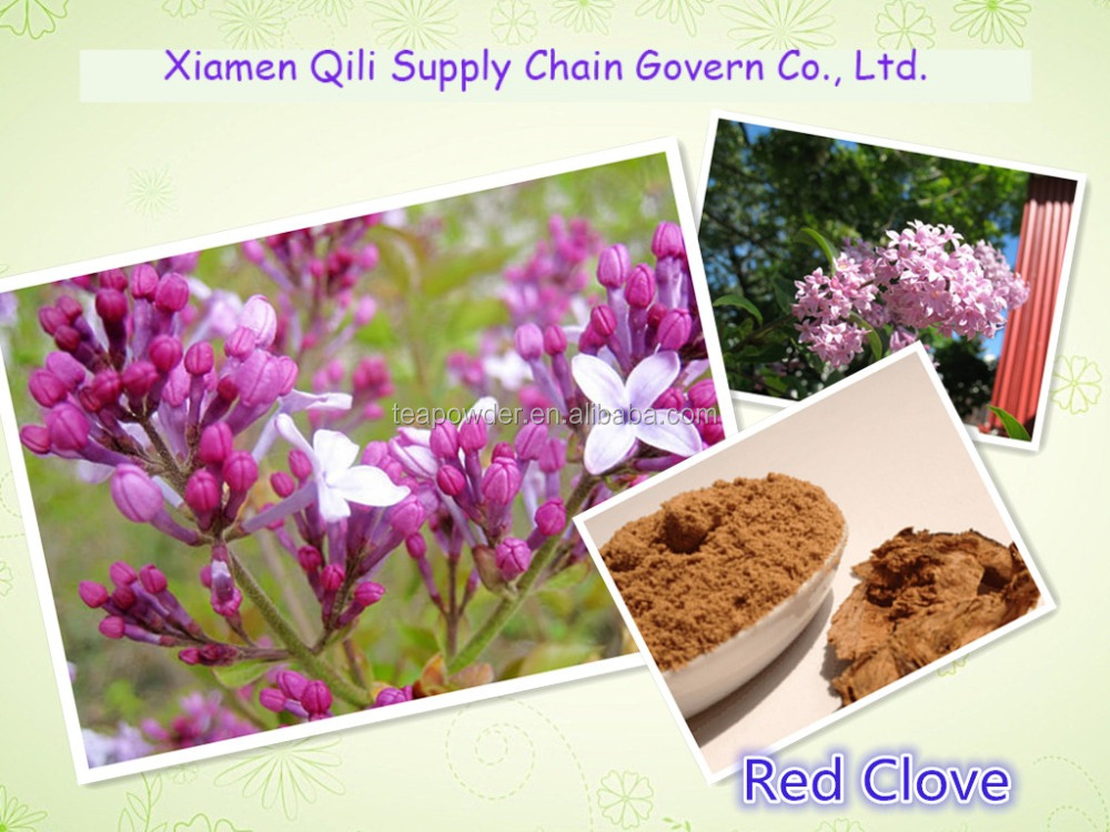Factory Price Red Clover extract / Total Isoflavones >8.0%