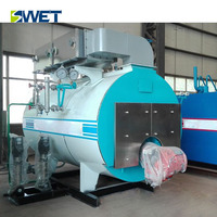 Low Nitrogen with competitive price hotel gas fired steam boiler