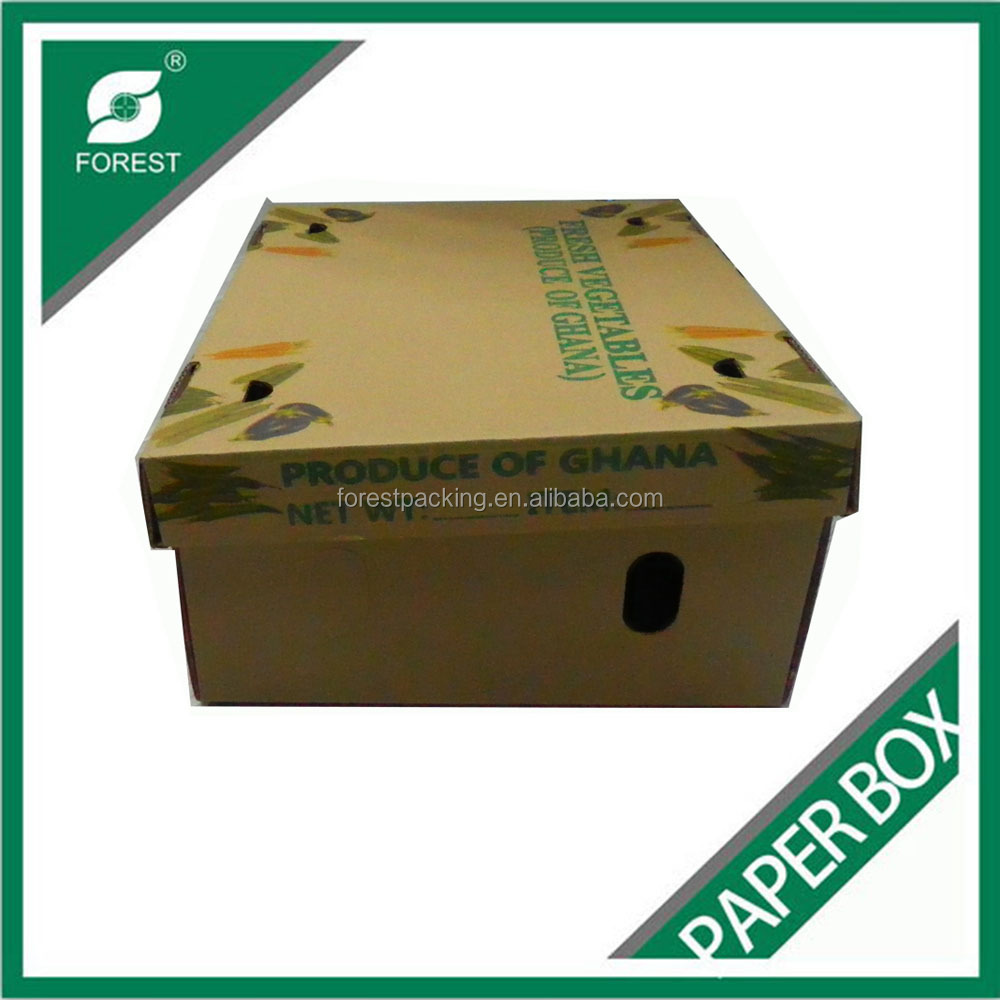 CORRUGATED CARDBOARD PAPER PLAIN SHOE BOX