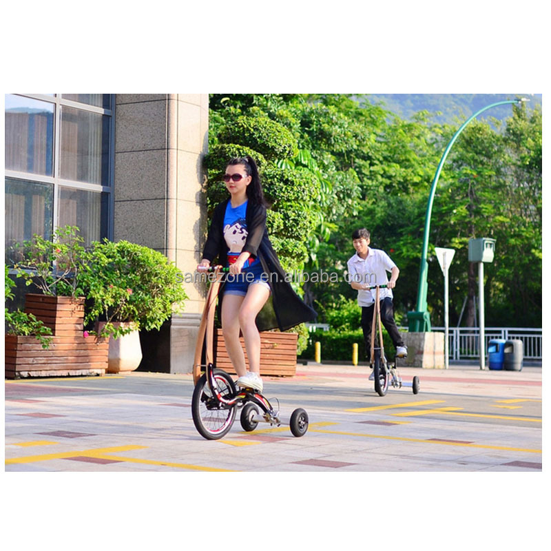 chinese version new invent halfbike 3 wheel tricycle exercise bike