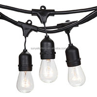48 ft Commercial outdoor patio edison String Lights