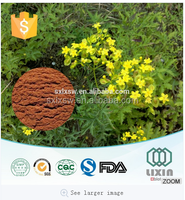 100% Natural Beer Hops Extract/Hops Flower P.E./Hops flower Extract