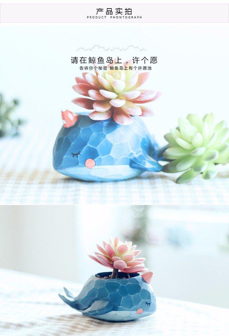 Roogo resin creative cartoon animal bonsai pots wholesale whale shape succulent flower pots