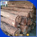 high quality Hot Africa rosewood logs