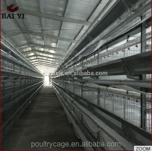 Poultry Cage Feeding System For Small Livestock