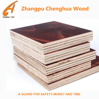 customized size laminated marine plywood