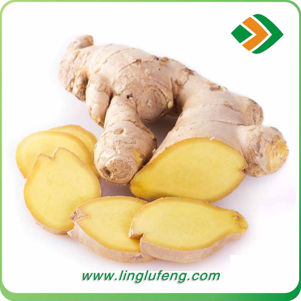 2016 Chinese Mature Ginger for sale Wholesale Ginger Price