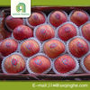 New design bulk apples wholesale with high quality
