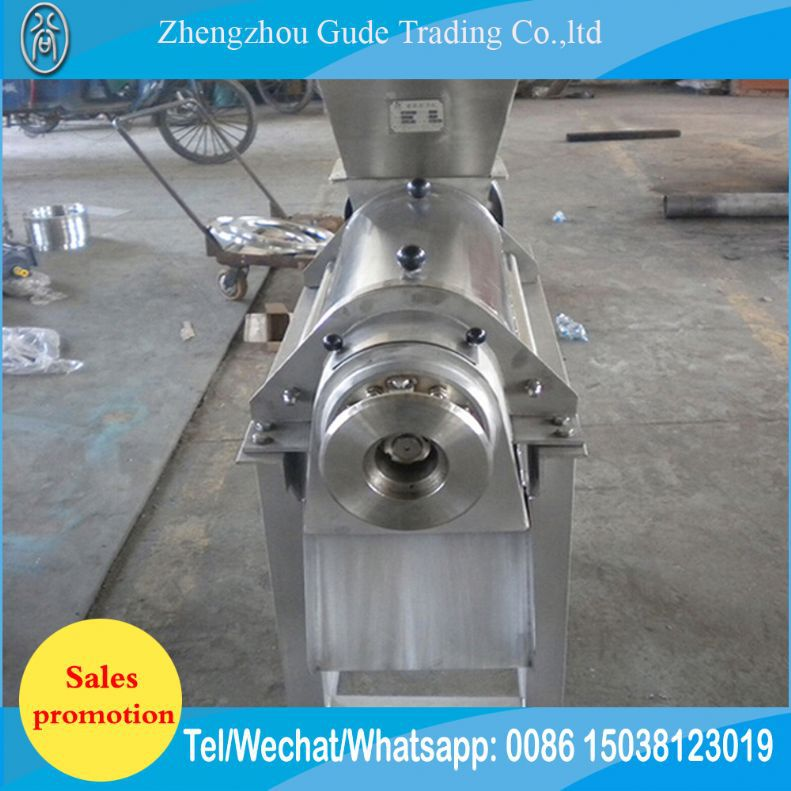 Professional Commercial 43Rpm Cold Press Slow Vegetable Juicer