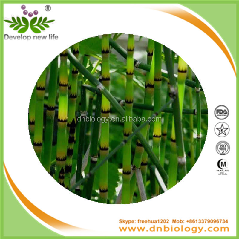 Bamboo Vinegar Extract , Bamboo Shoot Extract , Bamboo Leaves Extract
