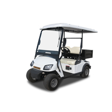 Cheap Luxury Electric Golf Buggy For Sale