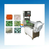 FC-301 vegetable salad cutter machine equipment (#304 stainless steel) (food-grade parts)