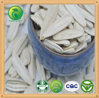 White Sunflower Seeds Wholesale/ new crop and 2014 crop