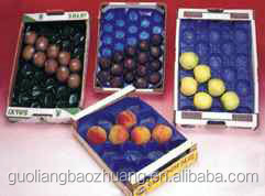 Peach/Tomato/Apple/Kiwi/Fig/Pear Fresh Fruit Export Packaging Tray