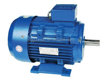 AC Synchronous single phase ac motor