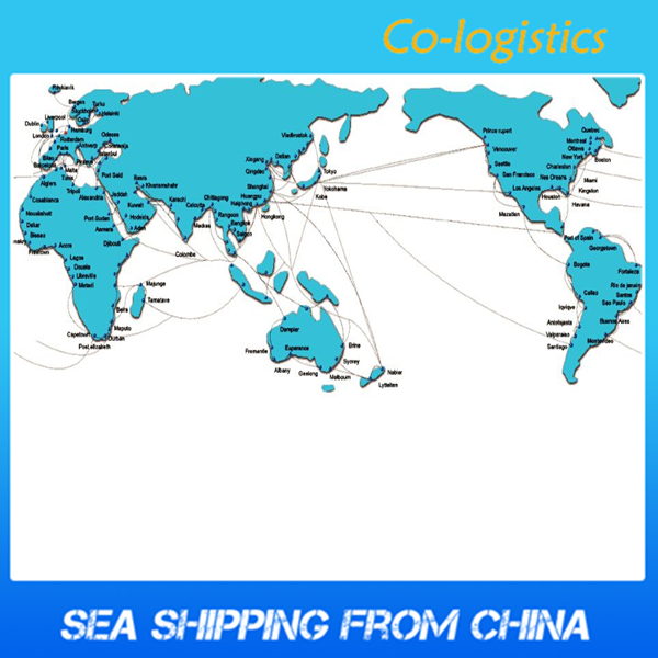 Competitive local sea freight forwarder shipping from shenzhen to CASABLANCA (sophie@co-logistics.com)