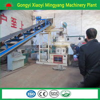 ISO 9001Trade Assurance biomass briquette forming machine/rice husk biomass pellet making machinery008613838391770