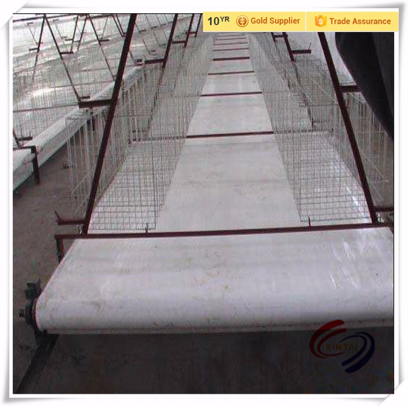 PP belt for chicken cage system