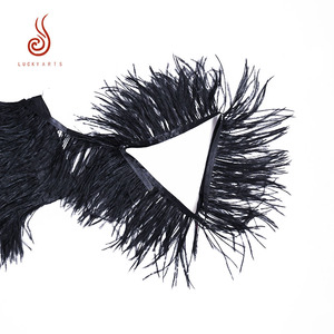 High quality black ostrich feather strung for Halloween decoration