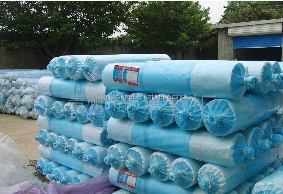 HDPE plastic packing film in roll for greenhouse