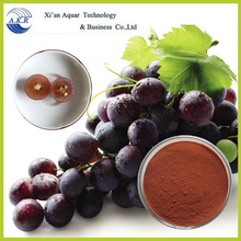 China Supplier grape seed extract 95% proanthocyanidins