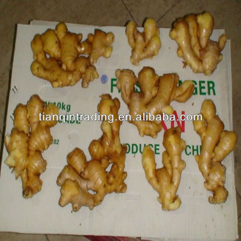 2012 new crop china ginger