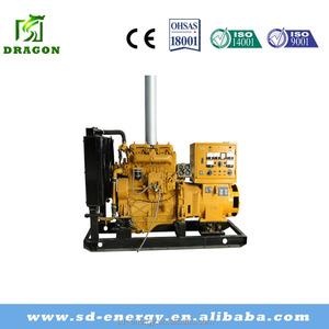 CNG/NG/LPG biogas electric generator 20kw to 1200kw for Thailand